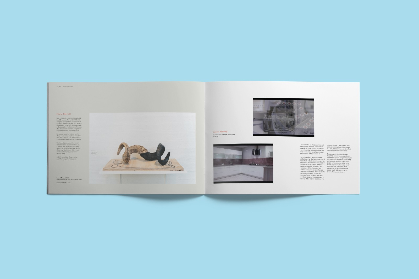 Exhibition publication: The Negligent Eye