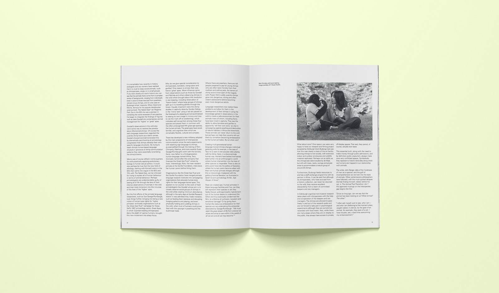 Art publication: Primate Cinema